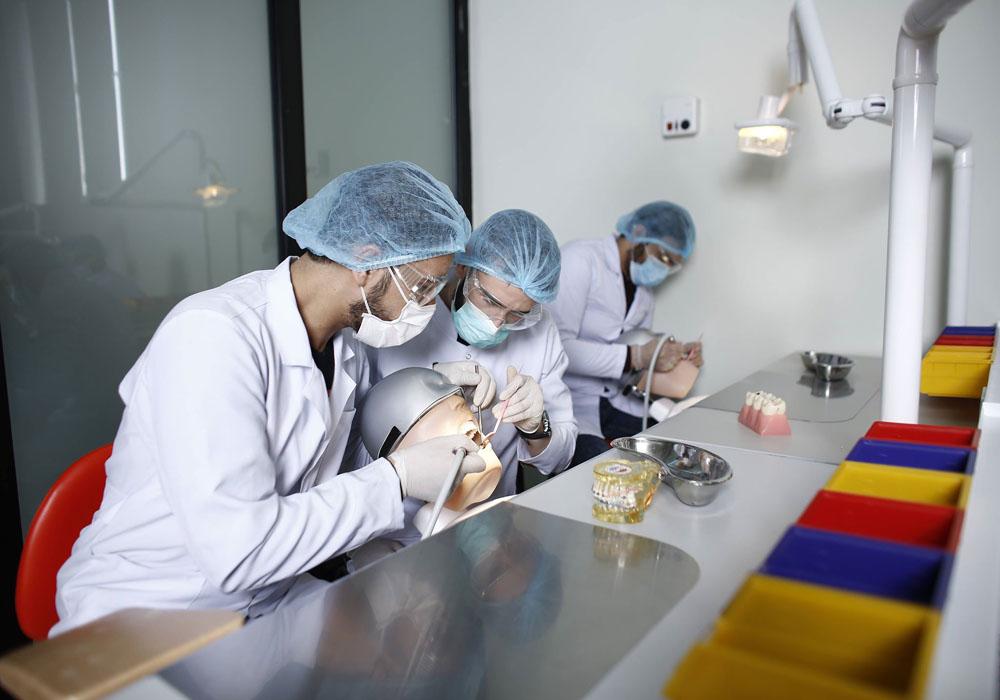 საქართველოს უნივერსიტეტი – უმაღლესი სამეცნიერო და სამედიცინო მიღწევების პირისპირ