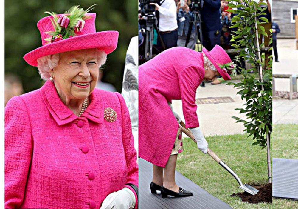 93 წლის დედოფალმა ორმო დამოუკიდებლად ამოთხარა