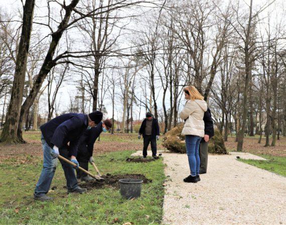 """ბოტანიკურ ბაღში კოლხური ვაზის ჯიშის """"ოჯალეშის"""" ხეივანს გააშენებენ"""